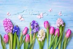 柔和的淡色彩色的花 免版税库存照片