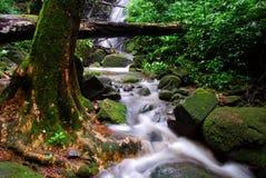 柔滑的瀑布 库存照片