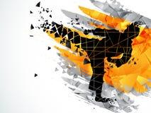 柔道体育概念的空手道战斗机 图库摄影