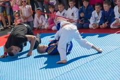 年轻柔道摔跤手在示范表现的8-10年 库存图片