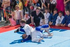 年轻柔道摔跤手在示范表现的8-10年 库存照片