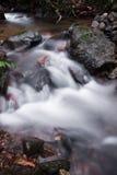 柔滑的流动在有岩石的森林的缎软的河在长的曝光 免版税图库摄影