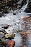 柔滑的流动在有岩石的森林的缎软的河在长的曝光 库存图片