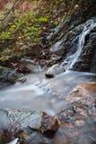 柔滑的流动在有岩石的森林的缎软的河在长的曝光 图库摄影