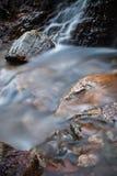柔滑的流动在有岩石的森林的缎软的河在长的曝光 免版税库存照片