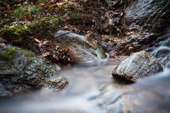柔滑的流动在有岩石的森林的缎软的河在长的曝光 免版税库存图片