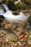 柔滑的缎软的河瀑布在有岩石的深森林里在长的曝光 图库摄影