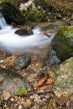 柔滑的缎软的河瀑布在有岩石的深森林里在长的曝光 免版税库存照片