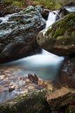 柔滑的缎软的瀑布在有岩石的深森林里在长的曝光 图库摄影