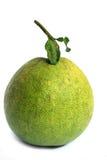 柚子 库存照片