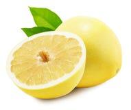 柚或中国葡萄柚在白色背景 免版税库存照片
