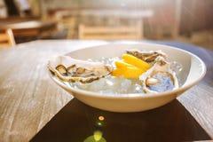 柠檬三个稀薄的片断和三只新鲜的可口牡蛎 库存照片