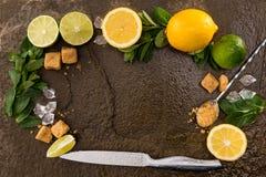 柠檬与薄荷叶的石灰在石委员会的切片和刀子 库存照片