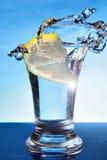 柠檬伏特加酒 免版税库存照片