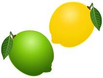 柠檬传染媒介例证集合 免版税库存照片