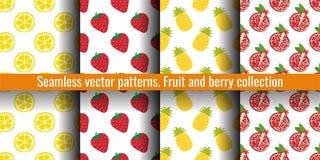 柠檬切片、草莓、菠萝和石榴 果子无缝的样式集合 衣裳或亚麻布的食物印刷品 时尚设计 皇族释放例证