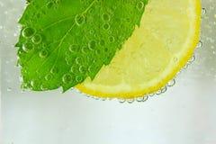 柠檬切片、薄荷的叶子和苏打 免版税库存照片
