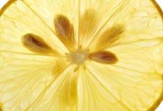 柠檬切片细节 免版税库存照片