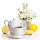 柠檬刷新的茶 免版税库存照片