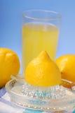 柠檬剥削者 免版税库存照片