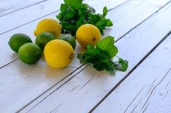 柠檬和石灰 免版税库存照片