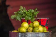柠檬和薄菏在印度街道上 库存图片