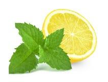 柠檬和薄菏 免版税图库摄影