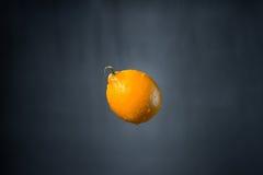 水柠檬和滴  免版税库存图片