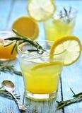 柠檬嘶嘶响 库存照片
