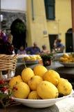 柠檬在意大利 库存图片