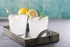 柠檬在盘子的迷迭香鸡尾酒 免版税库存图片