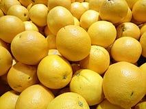 柠檬在Maget 库存图片