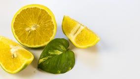 柠檬果子和叶子 库存图片