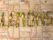 柠檬标记 免版税库存图片