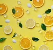 柠檬桔子在黄色留下立方体冰海壳柑橘样式 免版税库存图片