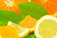 柠檬桔子 免版税库存照片