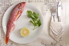 柠檬梭鱼荷兰芹 库存图片