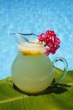 柠檬水夏天 免版税库存照片