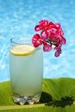 柠檬水夏天 免版税图库摄影