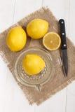 柠檬汁挤压在玻璃柠檬剥削者的 免版税库存照片