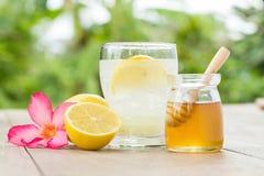 柠檬汁用蜂蜜 库存照片