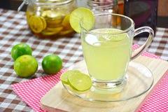 柠檬汁,在玻璃的柠檬汁 免版税库存照片
