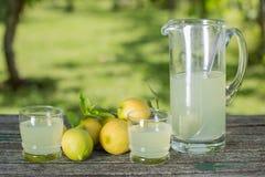 柠檬汁 免版税库存图片