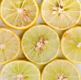 柠檬片 免版税库存图片