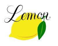 柠檬的例证 免版税库存照片