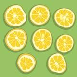 柠檬石灰橙色葡萄柚切片 库存图片