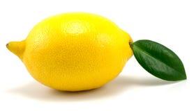 柠檬端 免版税图库摄影