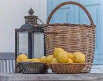 柠檬篮子  库存图片