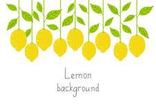柠檬背景 免版税库存图片