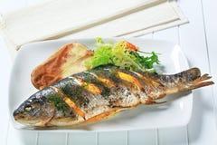 柠檬莳萝鳟鱼用被烘烤的土豆 库存图片